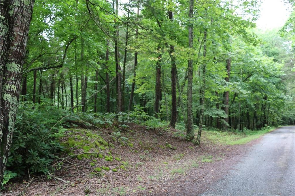 Land For Sale In King North Carolina 27021