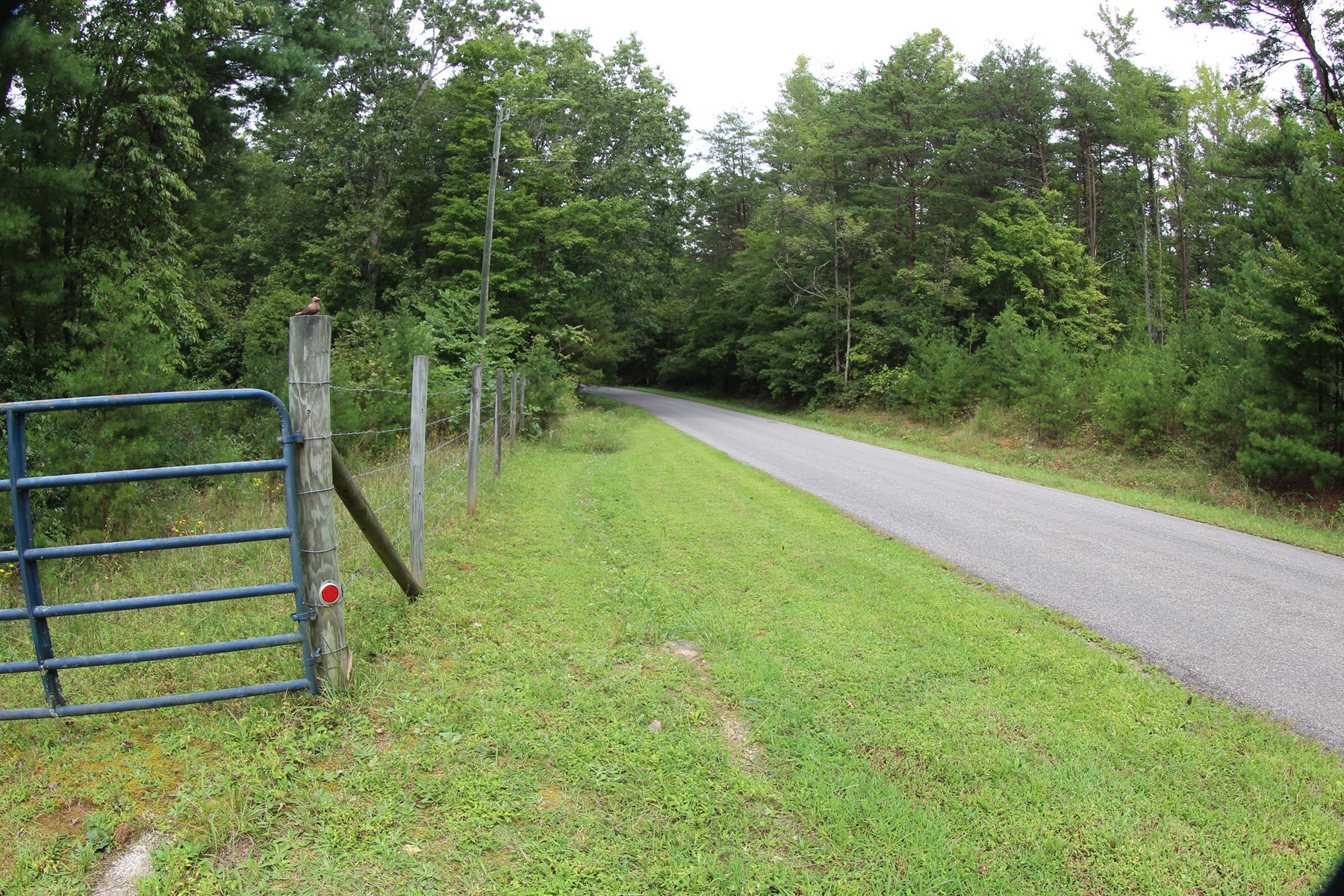8.61 ACRES OF LAND FOR SELL  IN PATRICK COUNTY, VIRGINIA