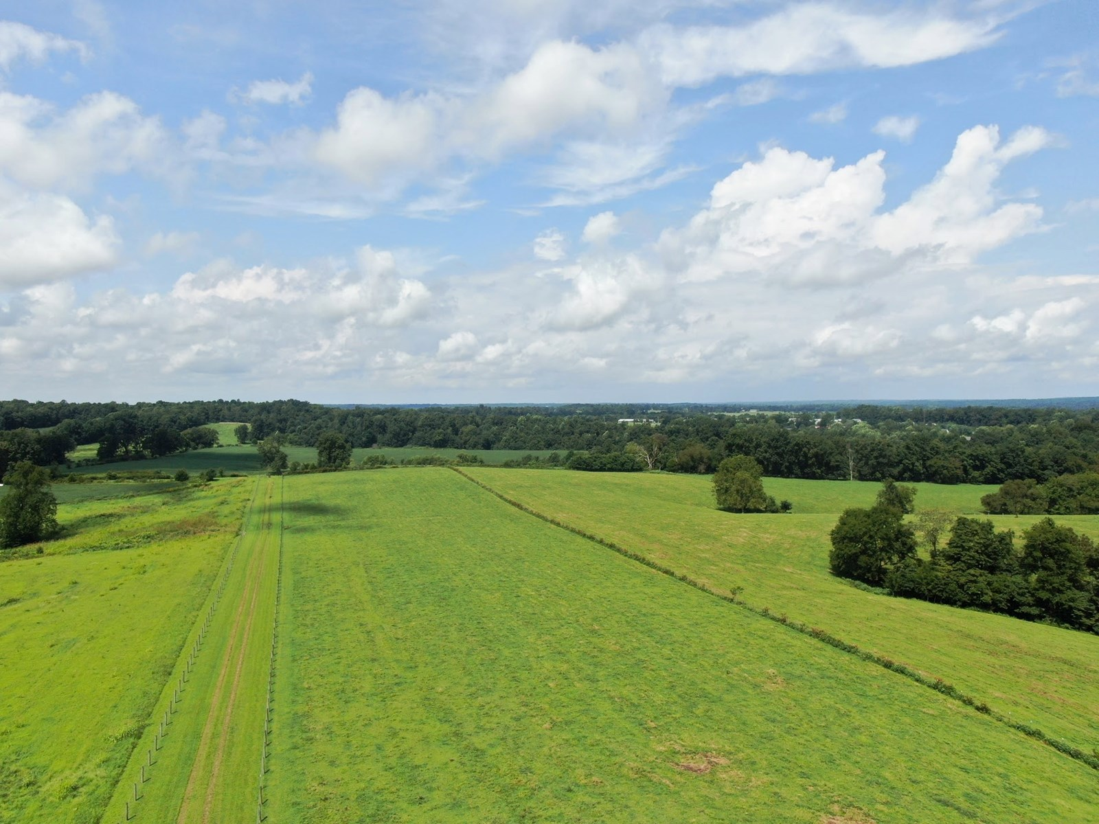 330 ACRE FARM for sale near Scottsville Ky.