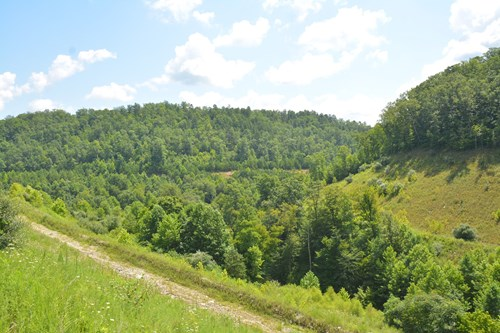 Kentucky Off grid hunting land for sale United Country