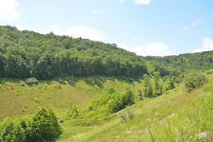 MOUNTAIN HUNTING LAND FOR SALE IN KENTUCKY