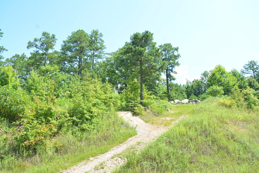 Kentucky hunting land for sale