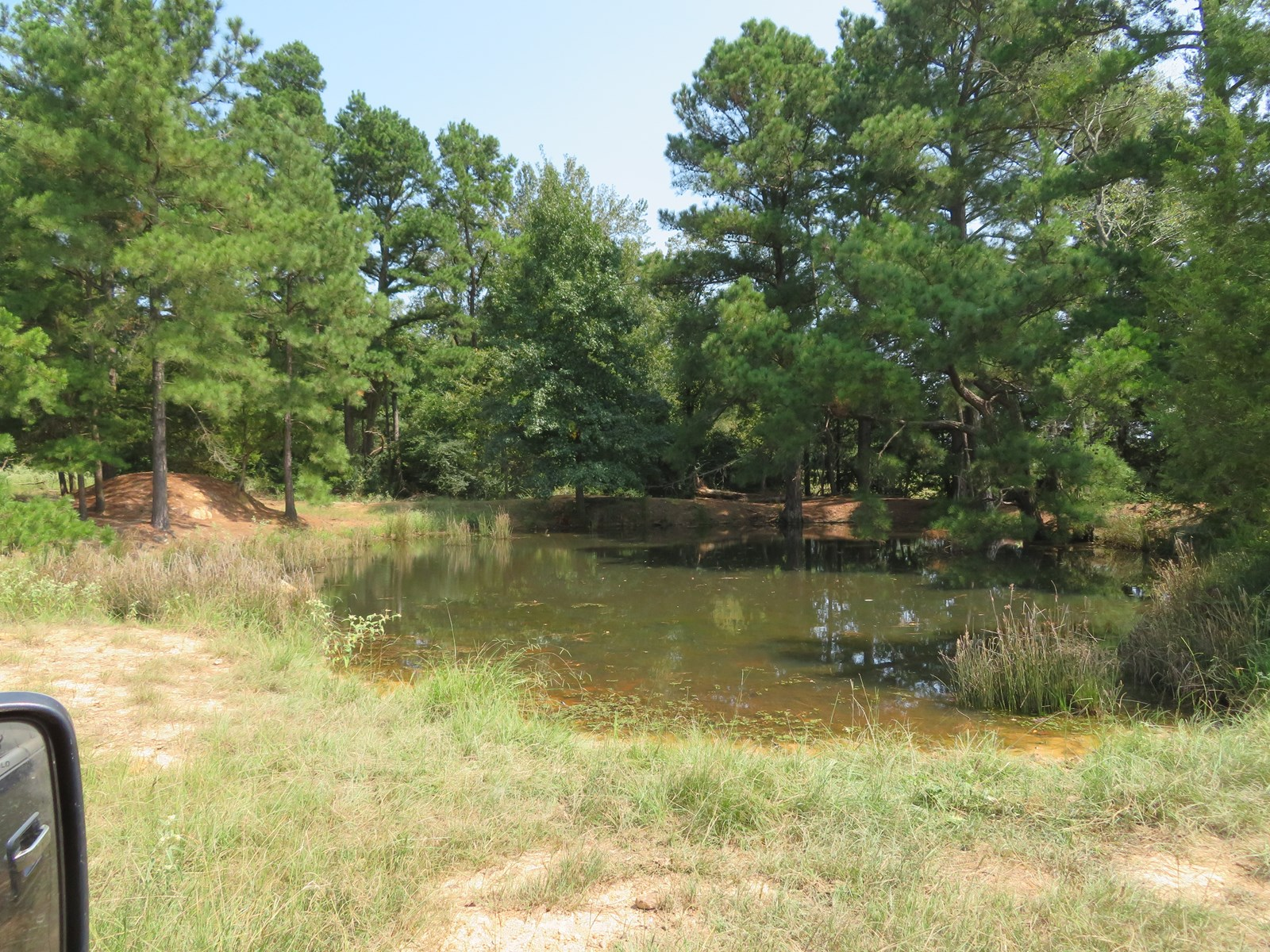 East Tx Land For Sale 98.8± acres in Cass County, Texas