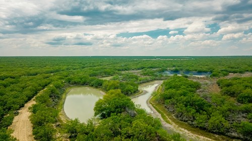 South Texas Hunting Ranch
