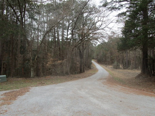 Wooded Lot Minutes To Buggs Island Lake, VA