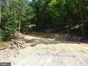 LAND FOR SALE LAVALE MD