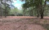 4.02 acres in O'Brien cleared and ready for your home!