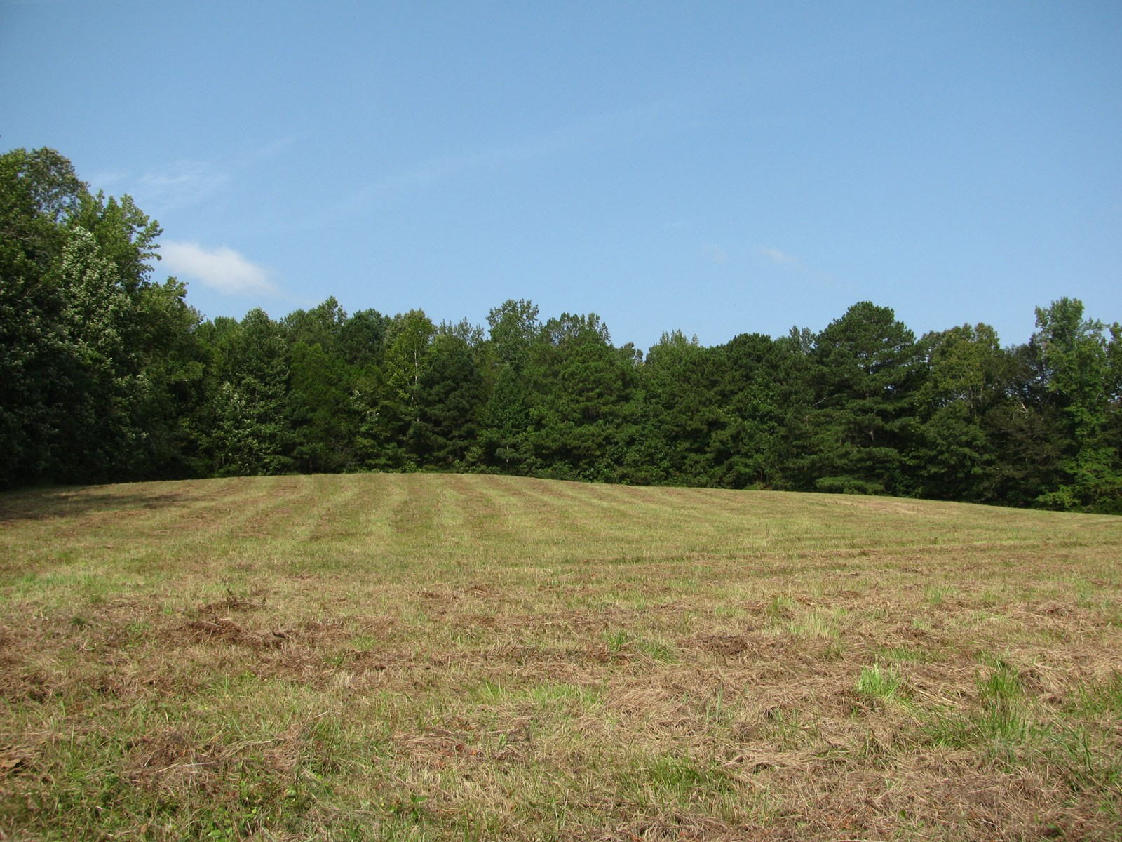 LAND FOR SALE IN TN, BUILDING SITES, PRIVATE- 5.5 ACRES