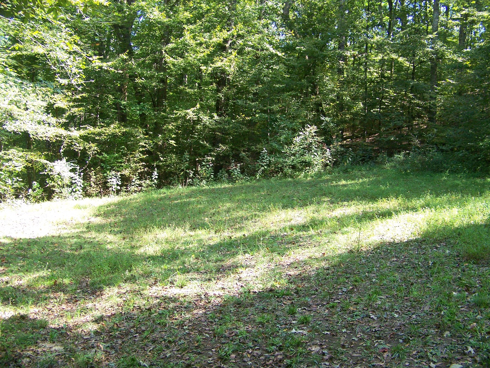 Tennessee Land For Sale With Natural Spring, Near Fishing