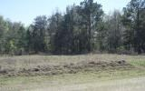 10 square acres, great opportunity for a mini farm!