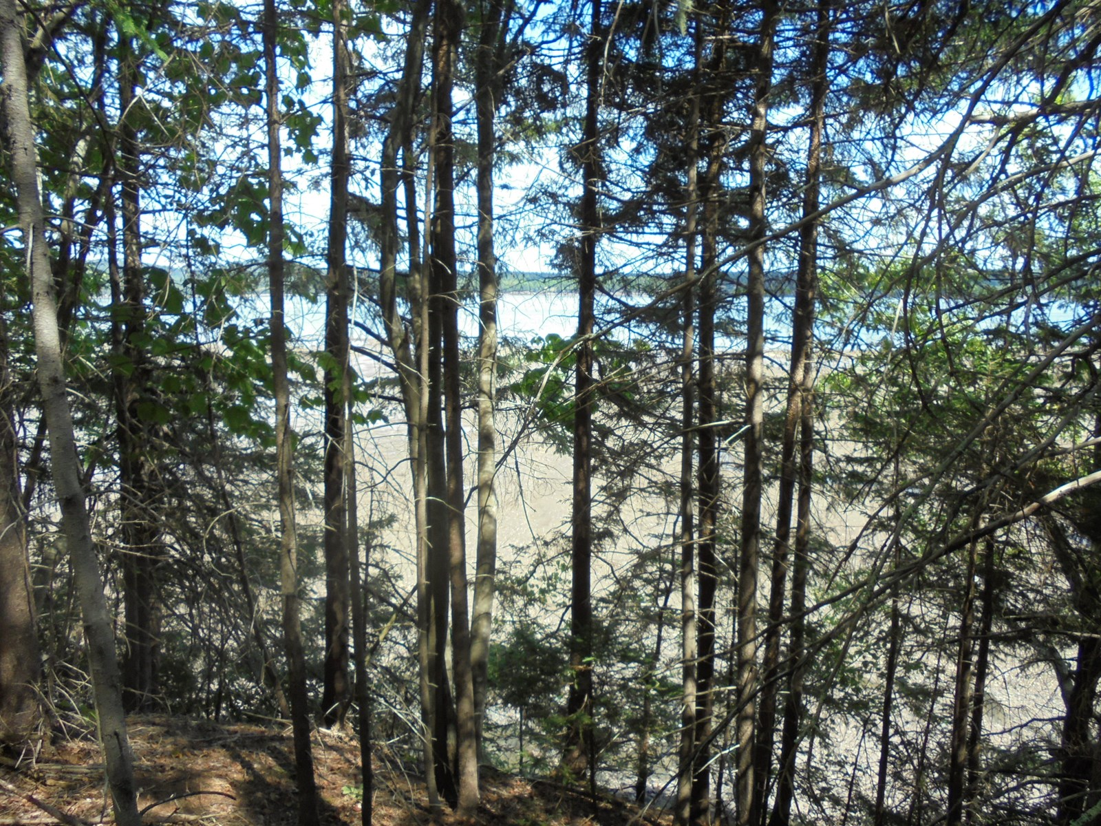 Riverfront Land For Sale | Maine Real Estate