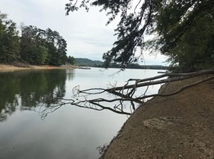 LAKEFRONT LOT FOR SALE TENNESSEE MOORESBURG CHEROKEE LAKE