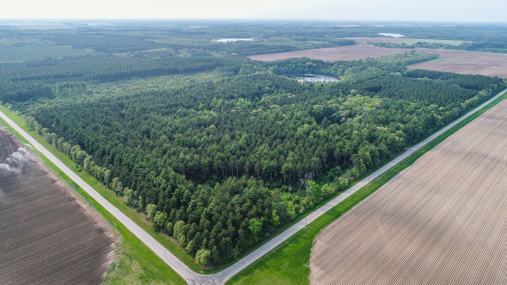 Hunting Land for Sale in hancock, Waushara County, WI