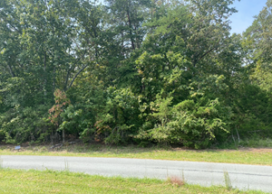 BUILDING LOT FOR SALE NEAR SMITH MOUNTAIN LAKE