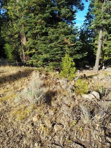 3.15 Acres For Sale in Northeastern CA