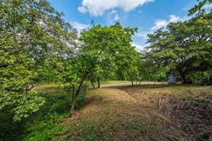 MONTANAS DE CONCHAL #36: PEACEFUL LOT SURROUNDED BY NATURE