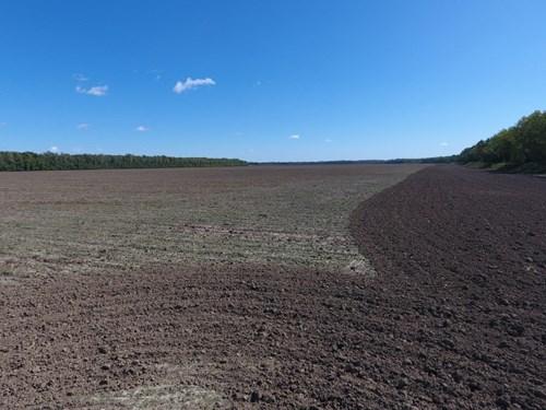 617+/- Acres, Outstanding Saline County Bottom