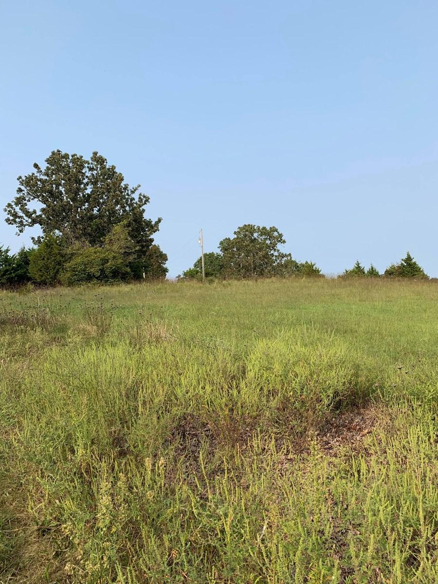 Small acreage for sale in Ava Mo