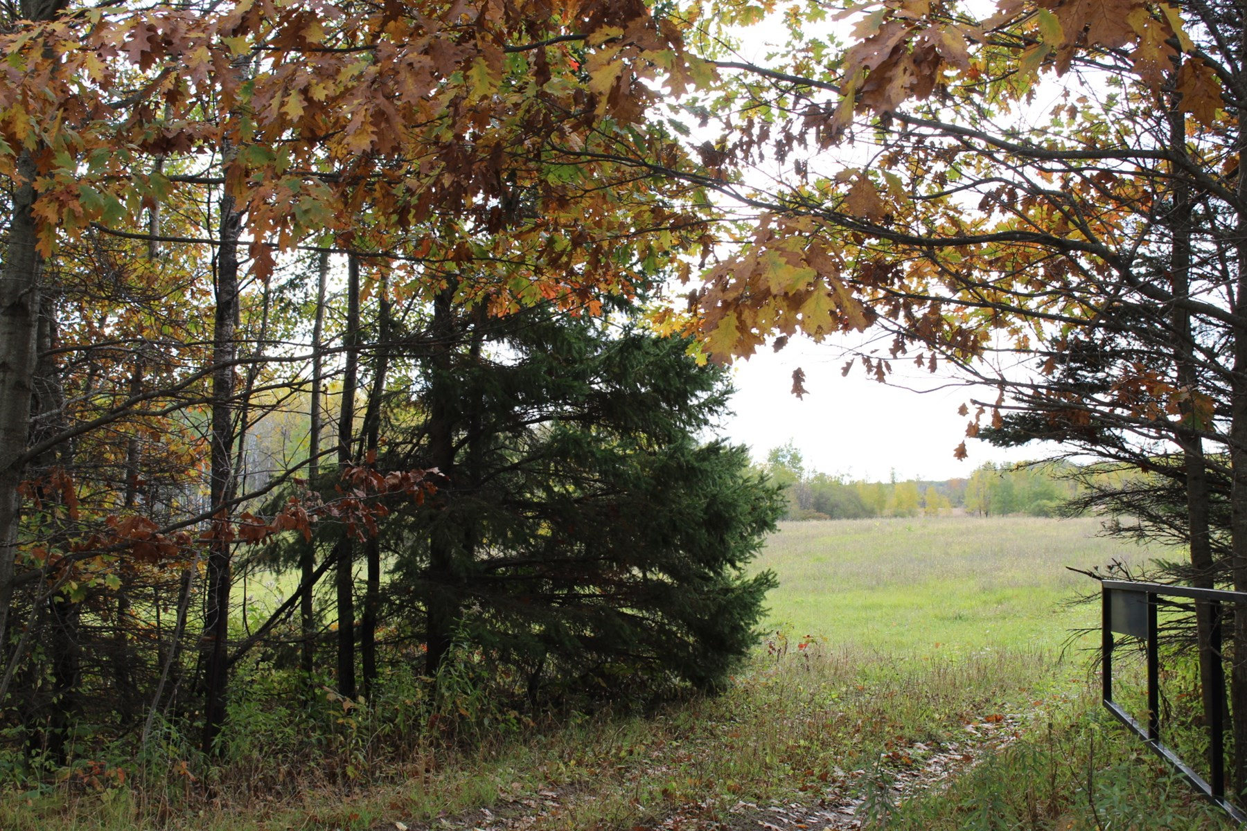 40 Acres of Land in Kanabec County for Sale