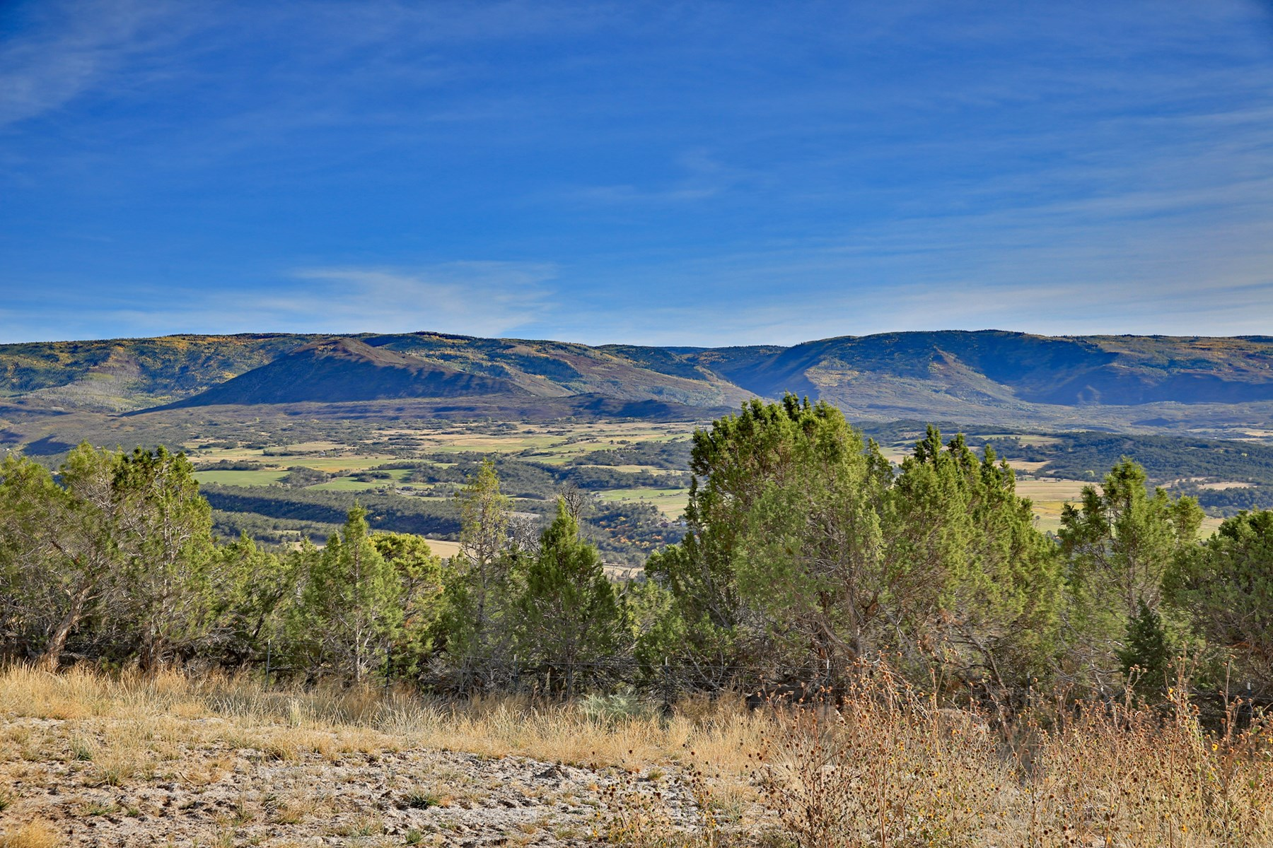 Vacant Land in Colorado For Sale