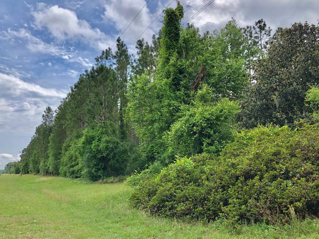 20 ACRES ON PAVED COUNTY ROAD IN BRANFORD, FL