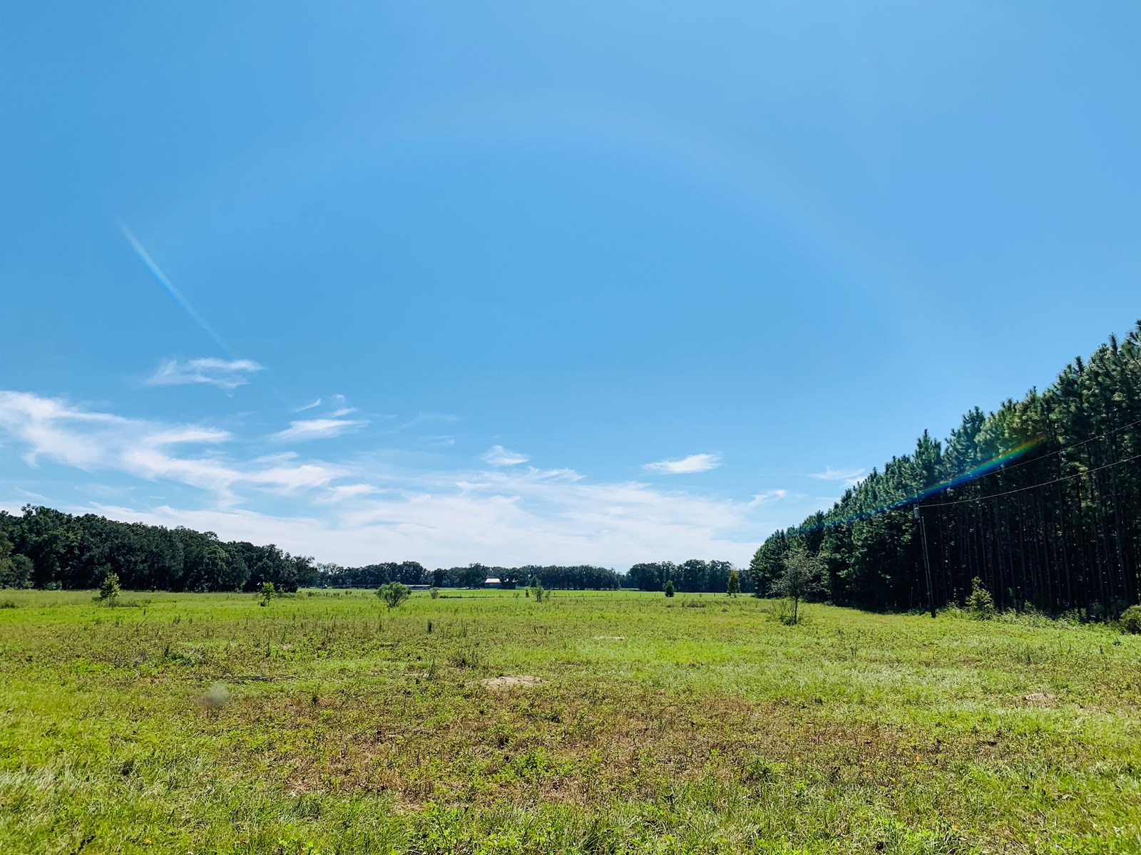 Quiet & Peaceful Acreage- Gilchrist County