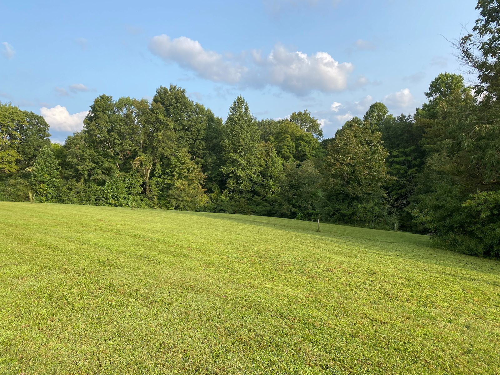 Land for sale in the Leipers Fork area.