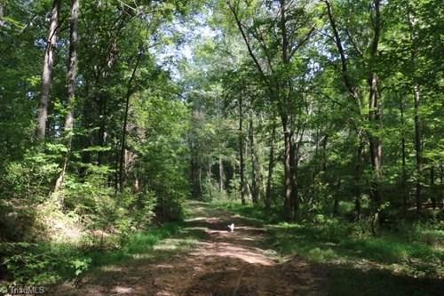 Land For Sale On Burton Road, Advance, NC 27006