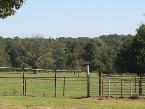 BEAUTIFUL TRACT OF HAY AND PASTURE LAND
