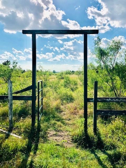 13 Acres Davilla, Texas