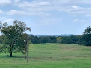 HOME & ACREAGE FOR SALE TYLER TX | RANCH OR COMMERCIAL