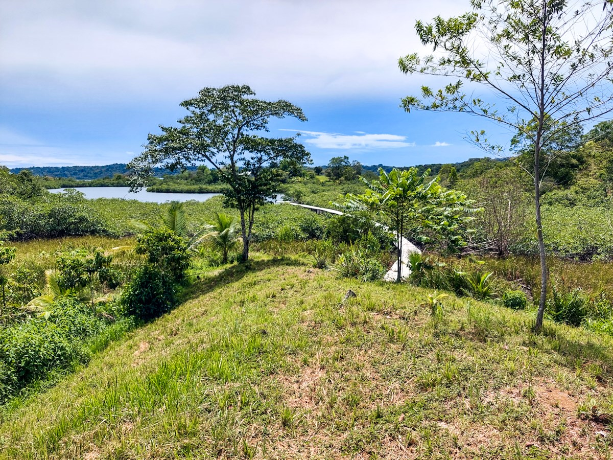 Hilltop land Bocas del Toro, Perfect Land for Your New Home