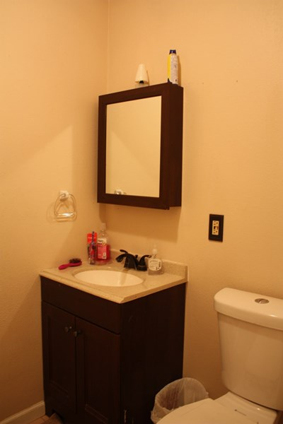 Hall Bath with updated vanity and tub/shower combo