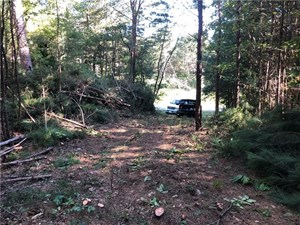 CREEKFRONT HUNTING PROPERTY FOR SALE IN PICKENS COUNTY