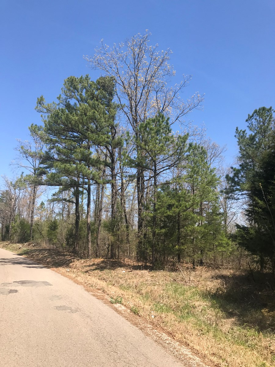 8.9 ACRE WOODED BUILDING SITE: