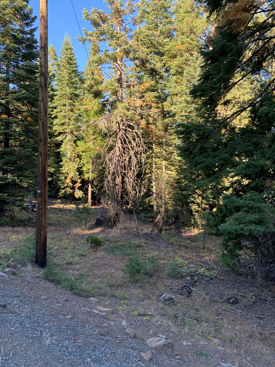 1+Acres off Cal Pines Blvd.