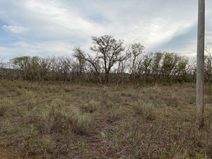 PRIME HUNTING PROPERTY 160 ACRES