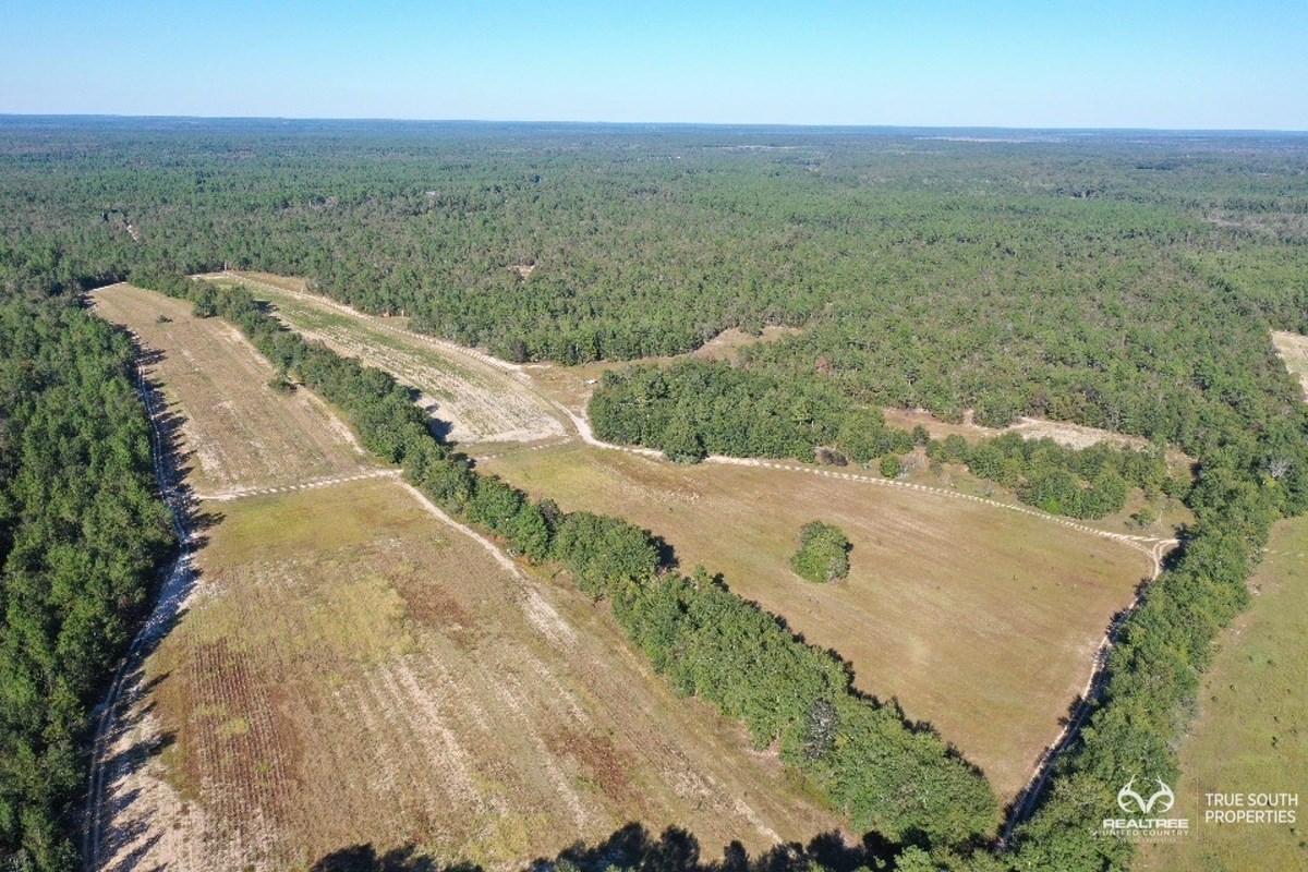 Aiken County Hunting / Recreational Farm
