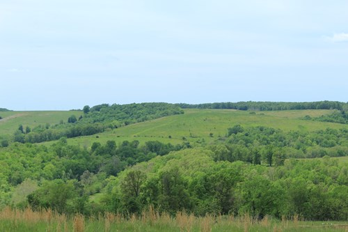 Ranch Land with Live Water in Southern Missouri Ozarks