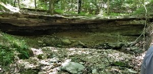 WOODED AND SECLUDED LAND NEAR BEAVER LAKE / EUREKA SPRINGS