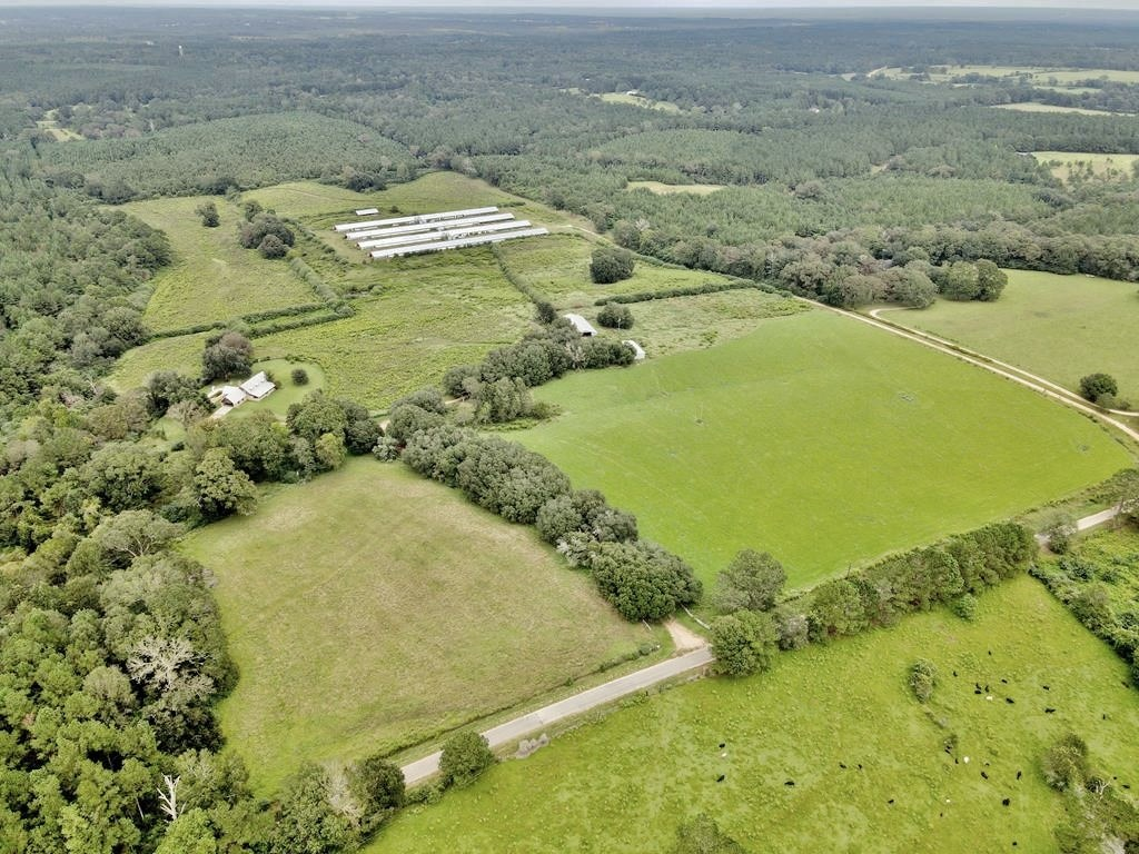 65 Acre Cattle Farm, Home for Sale Walthall County, MS