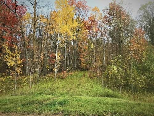 MN Hunting Property - Mahnomen
