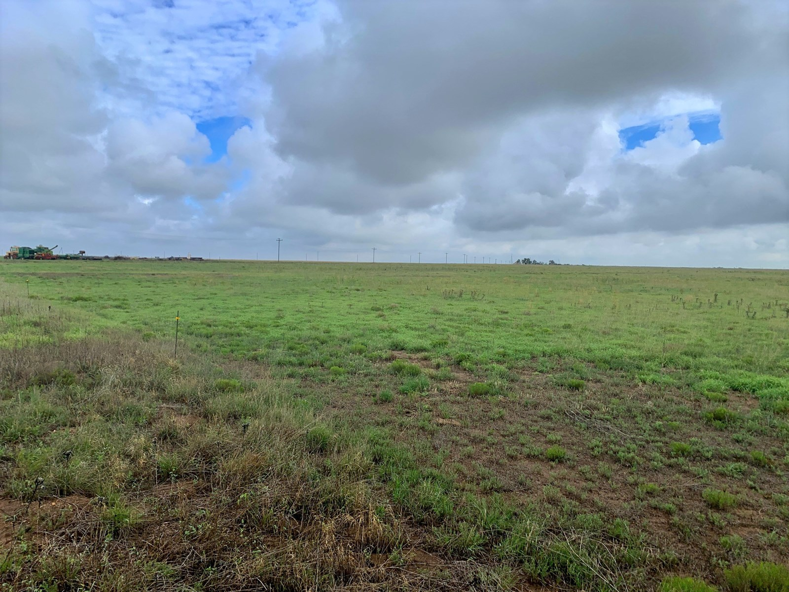 Texas County Farm, Ranch & Hunting Land for Sale 160 Acres