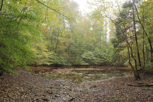 Recreational hunting building land with pond for sale TN