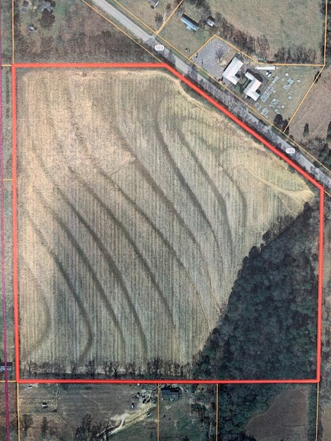 Land For Sale In Wicksburg, Alabama