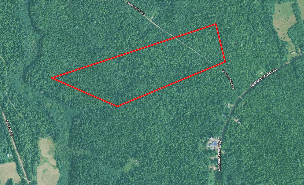 Affordable Maine 40 Acre Building Site