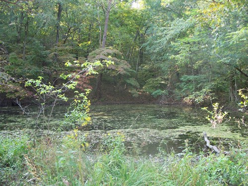 HUNTING ACREAGE, FOOD PLOTS, STANDS, DELAWARE CO, OK