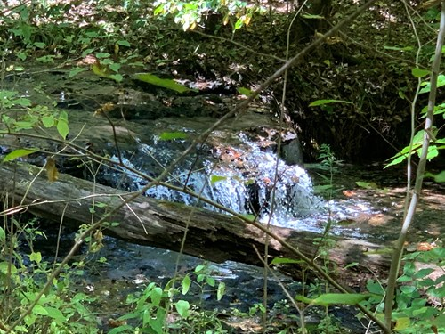 LAND FOR SALE IN TN WITH CREEK, SPRINGS, FENECING, HUNTING