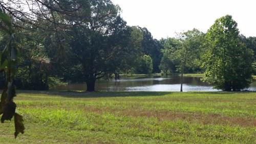 Beech Bluff TN Farm with Pond, Orchard, Deer, Turkey Hunting