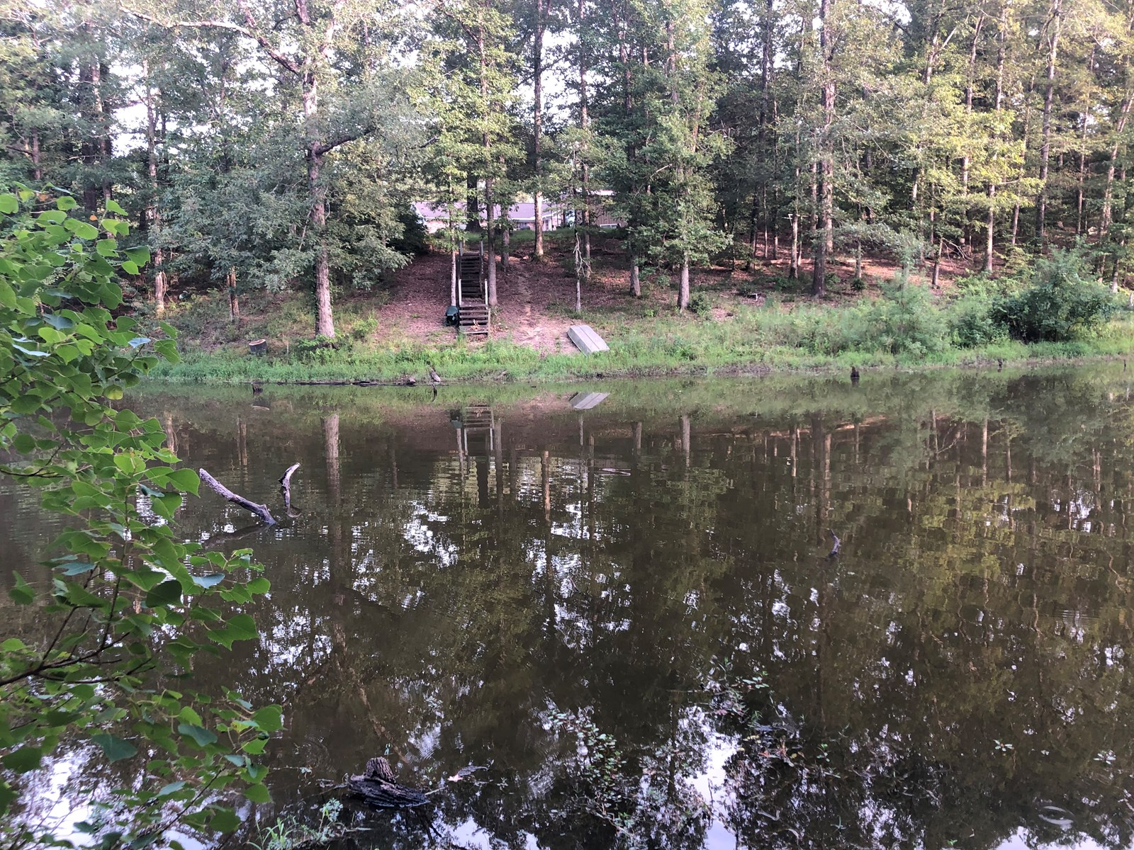 Timberland /w Pond on Co. Road for Sale near Frenchport, AR